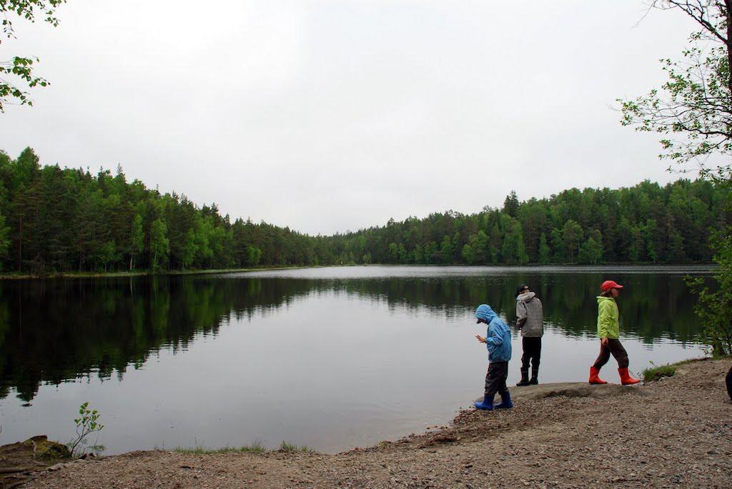 フィンランドのネイチャースクールを取材した時の写真