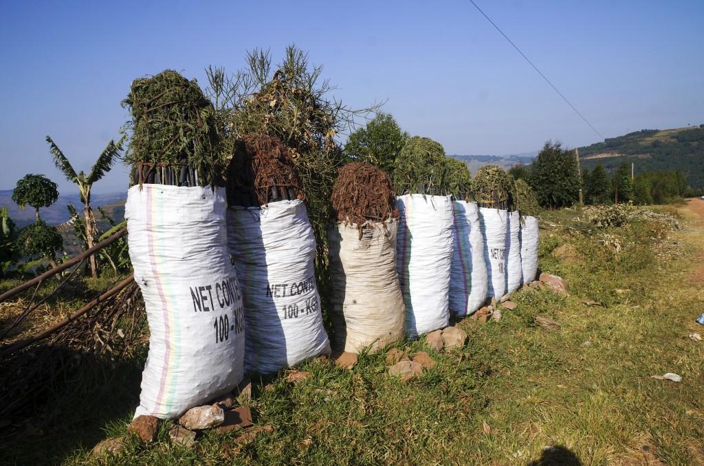 幹線道路沿いで販売されている木炭の袋